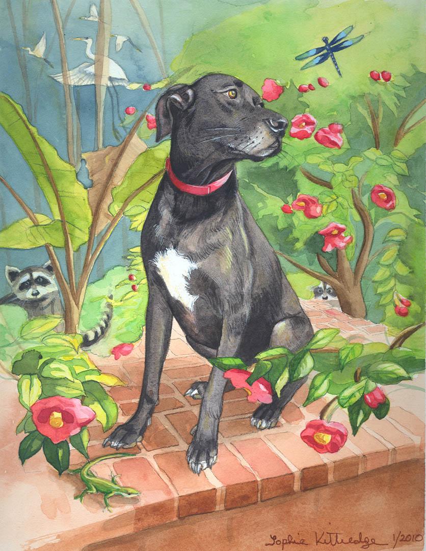 Duke Dog Painting • Commission