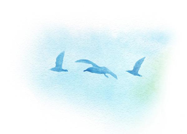 Spot Illustration Birds • Sophie Kittredge