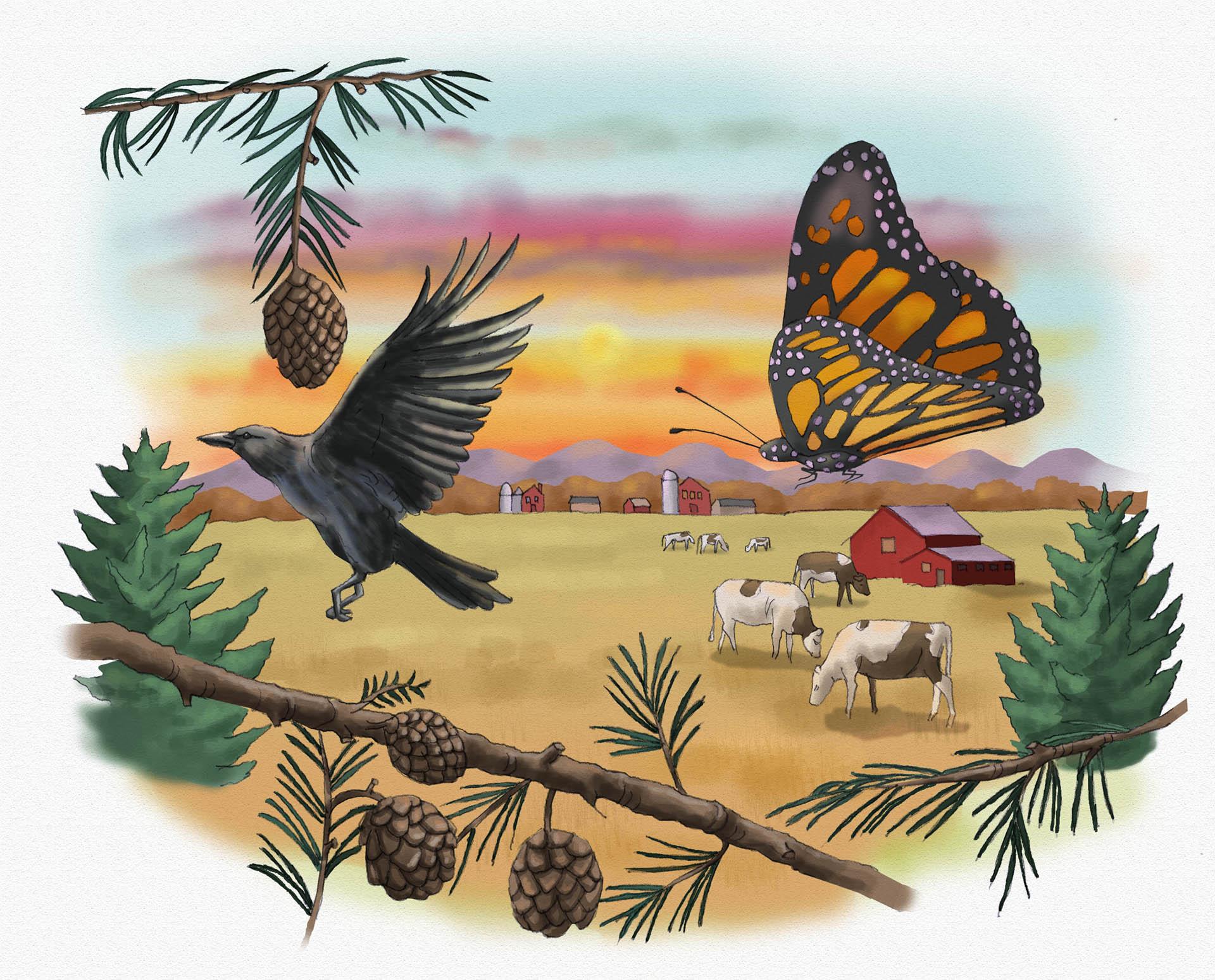 Illustration for Mari's Journey Article • Zootles Magazine