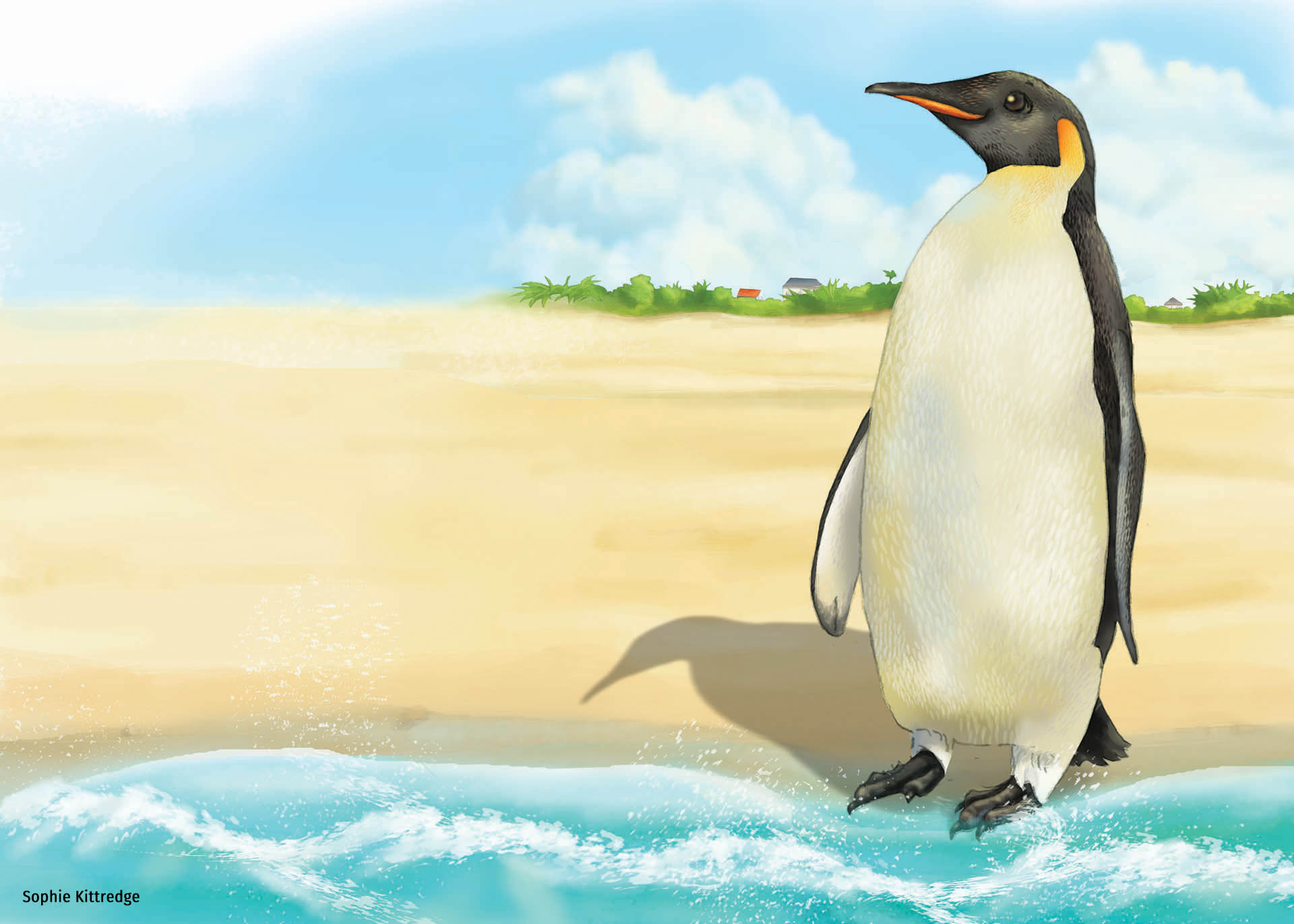 The Lonely Penguin's Blog Book Cover Illustration • Teacher Created Materials